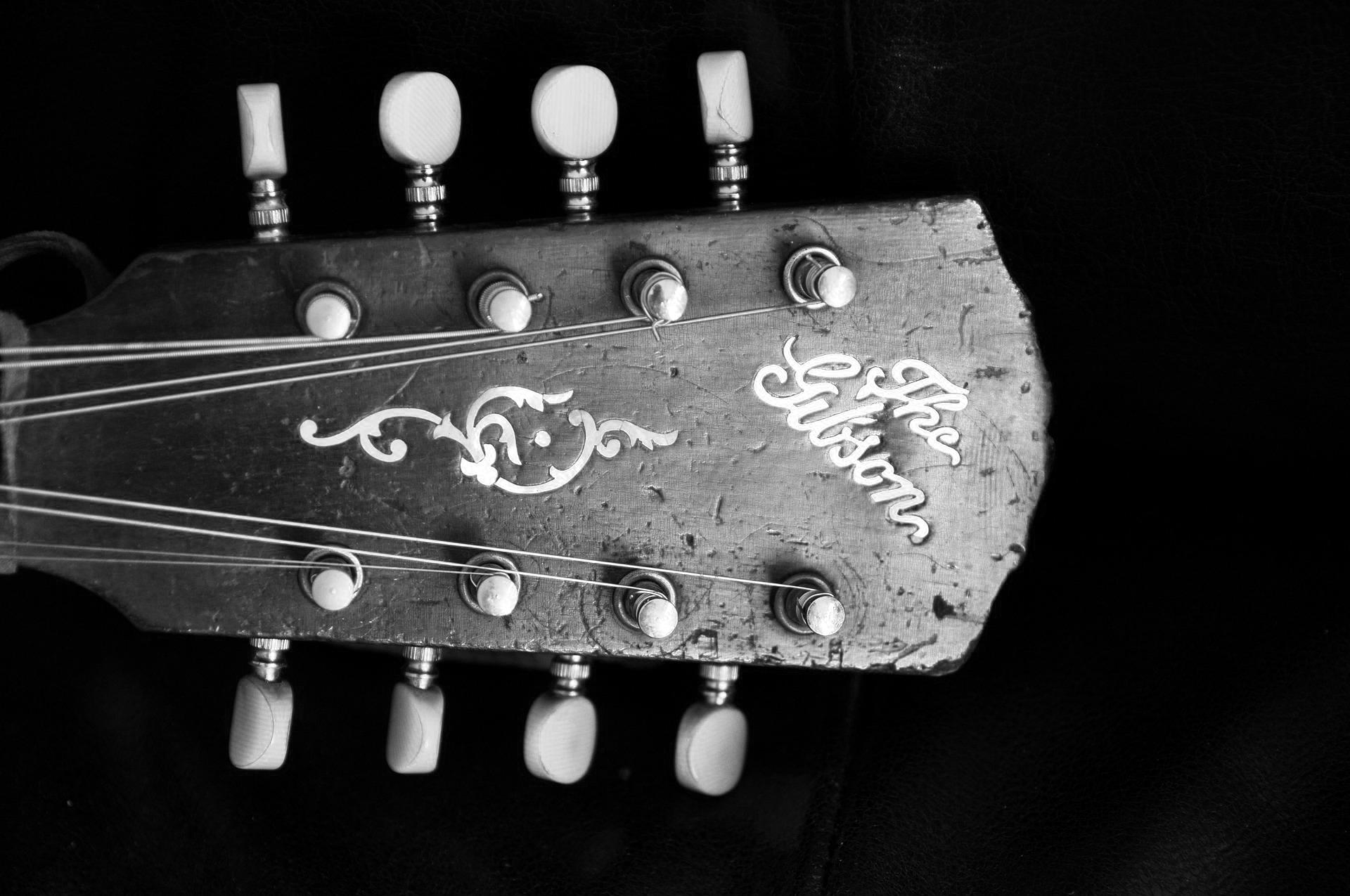 Abbildung einer Gibson Gitarre für Buchrezension zum Buch Vintage