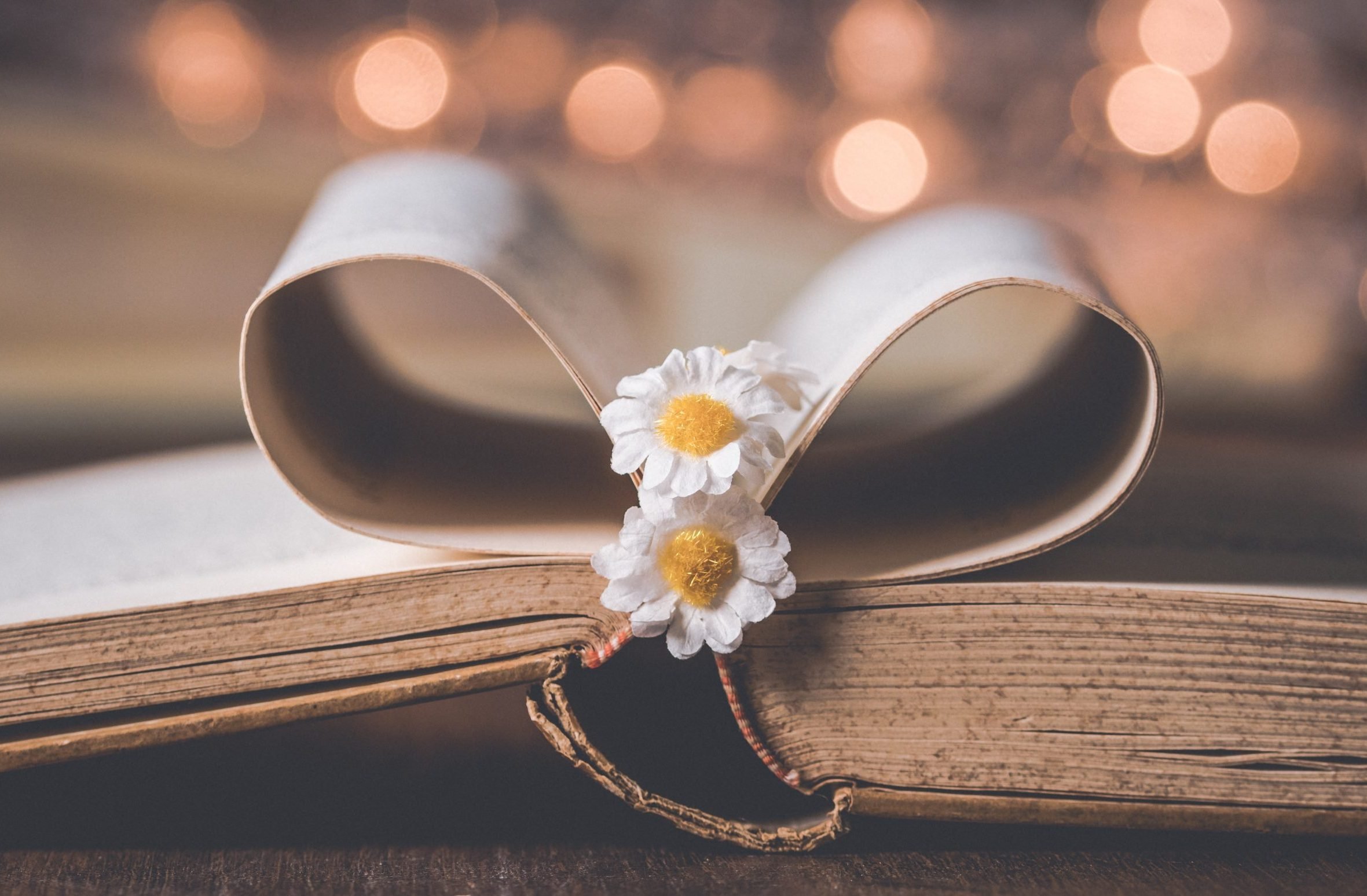 Buchseiten geformt zu einem Herzen