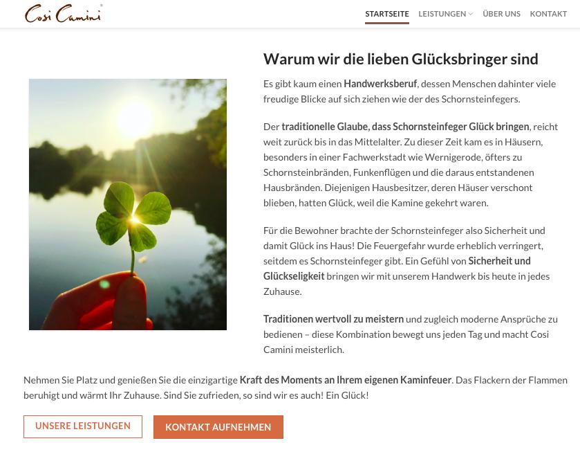 Textauszug Website zum Thema Energieberatung Cosi Camini